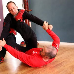 clases regulares kung fu